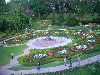 Doi Thung Mae Fah Luang Flower Garden