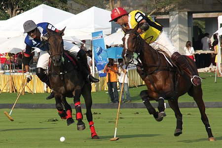Polo in Thailand
