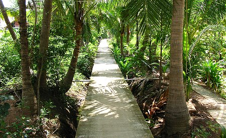 One of the paths around the community
